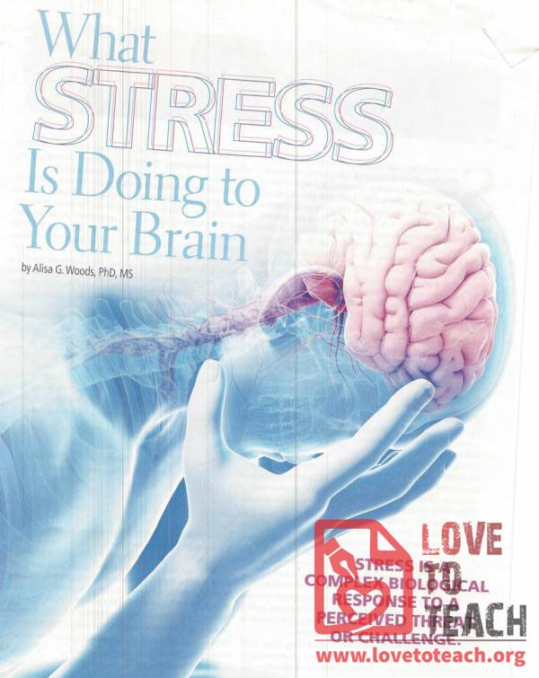 What Stress is Doing to Your Brain