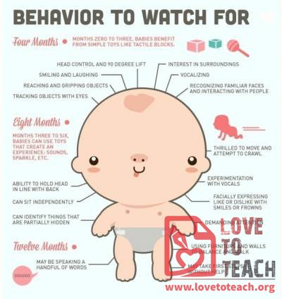 Baby Behaviors