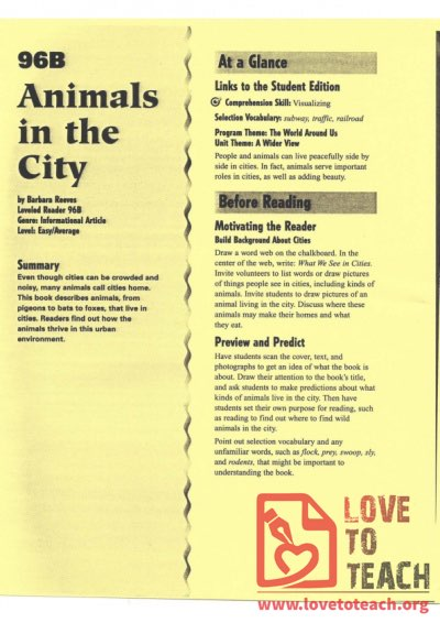 Animals in the City - Reading Guide