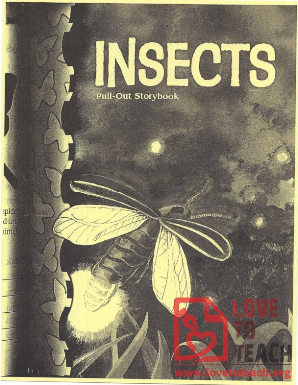 Insects - Pull-Out Storybook