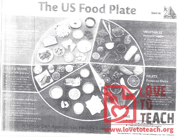 The US Food Plate