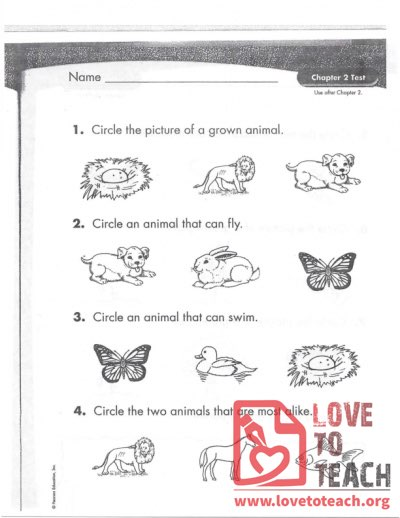 Animals and Plants Test
