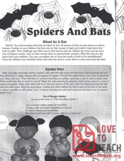 Spiders and Bats