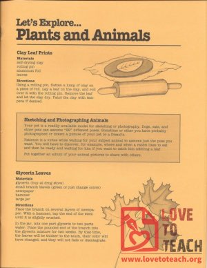 Let's Explore - Plants and Animals